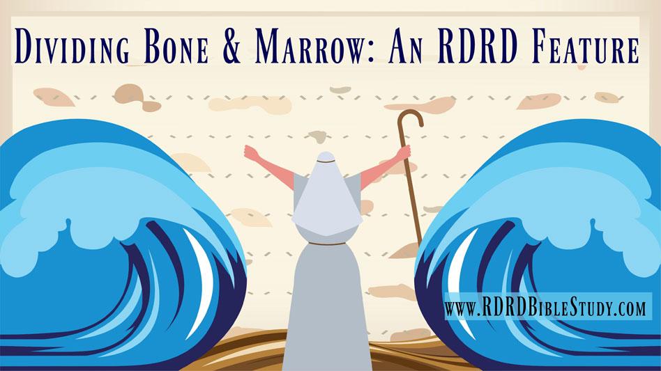 RDRD Bible Study Dividing Bone and Marrow