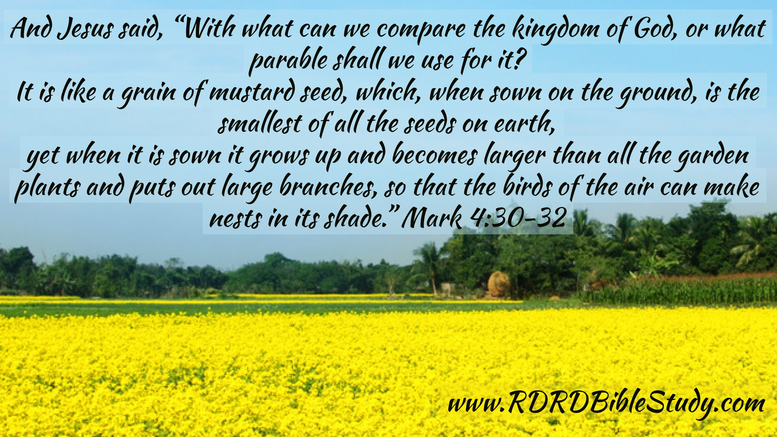 RDRD Bible Study Mark 4:30-32; Transformed Thinking By Grace: Thank God he's an atheist.