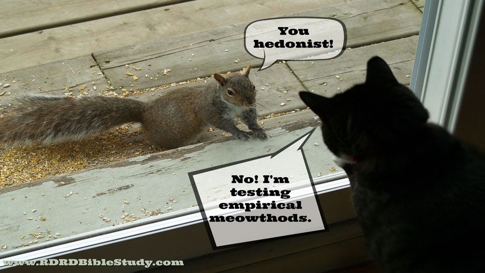 RDRD Bible Study Contentment Cat and Squirrel