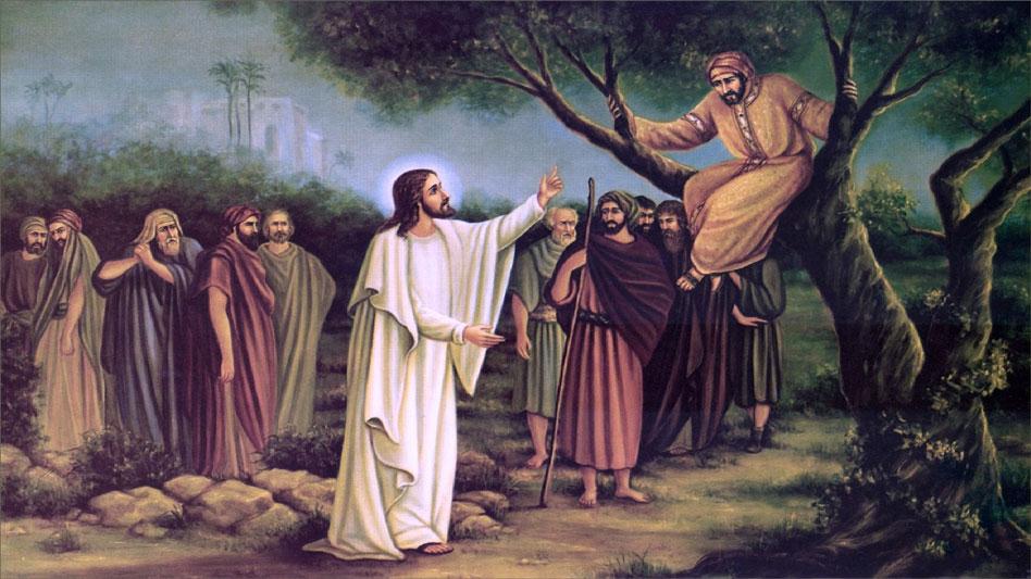 RDRD Bible Study Zacchaeus