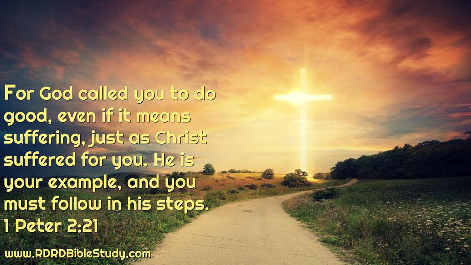 RDRD Bible Study 1 Peter 2 21