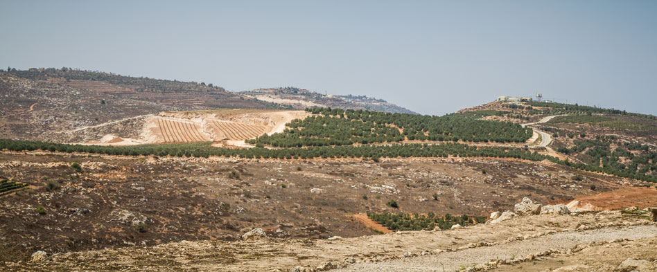 RDRD Bible Study Shiloh Israel Landscape View From Archaeological Park View 2 Of 3